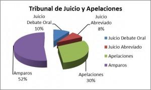 Informe TJyA 2015 - Grafico 2