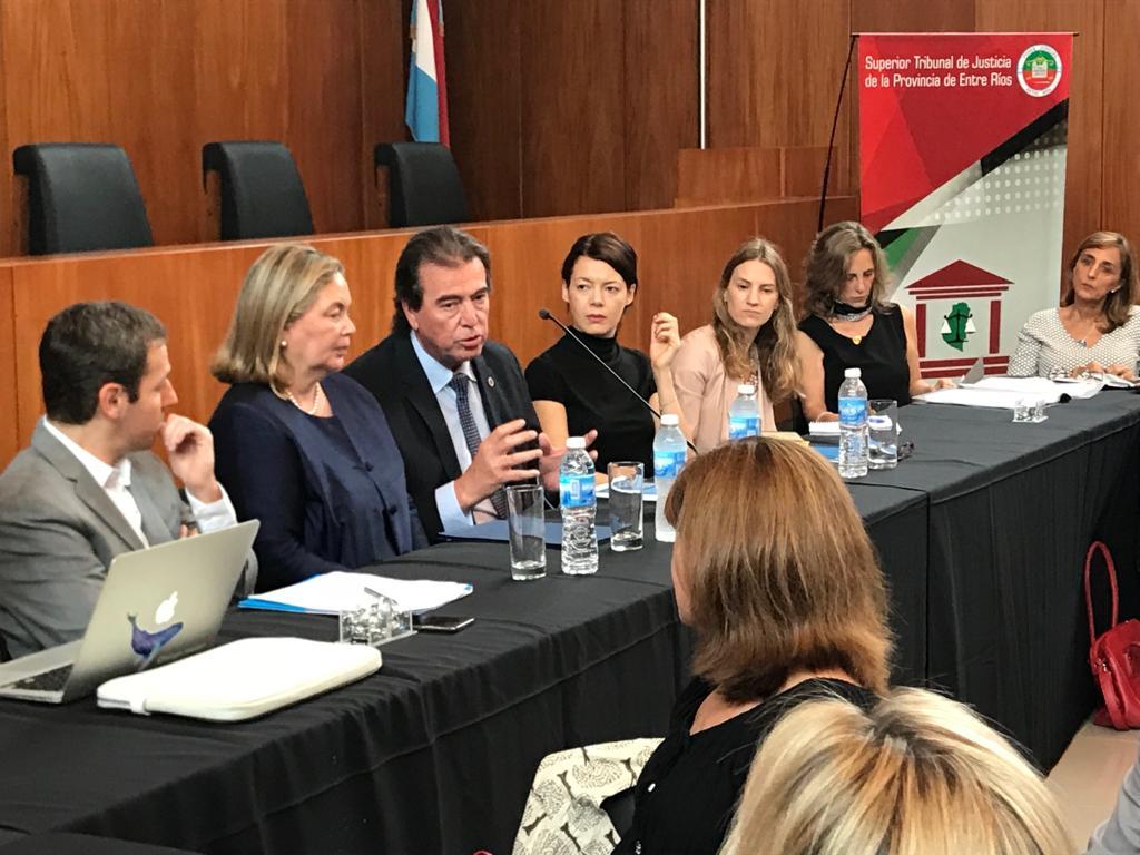 Se analizaron políticas y medidas judiciales tendientes a resguardar a menores de abuso sexual