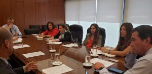 Castrillon reunion s- abogado del niño 2